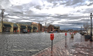 High-tide floods are becoming more common, and it's costing businesses