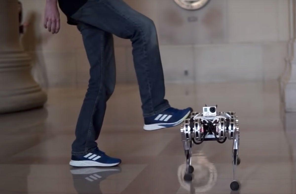 Kick robot