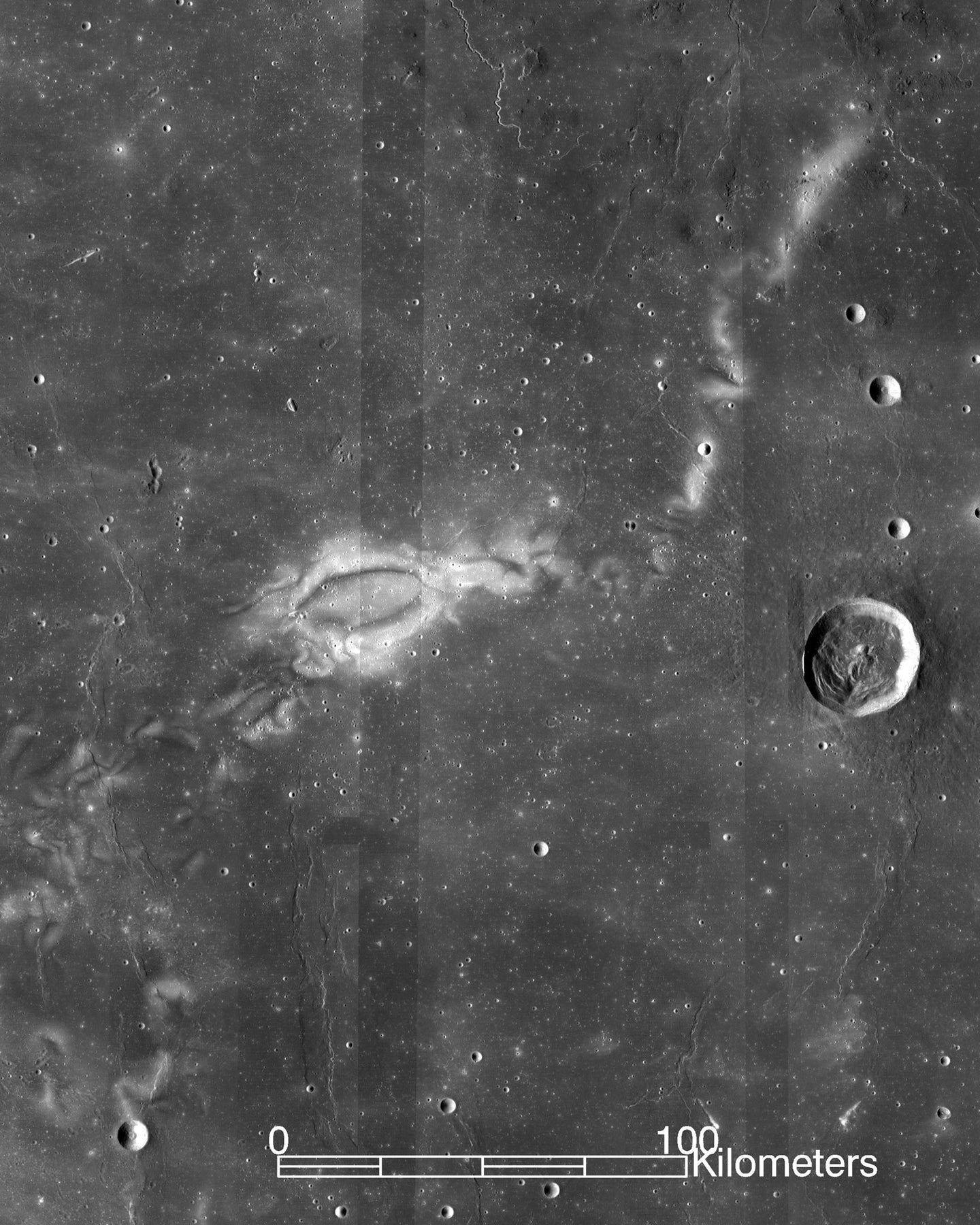 An image of Reiner Gamma on the moon.