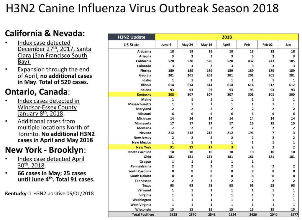 A map of the canine influenza outbreak