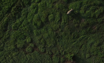 Watch Mapmaking Drones In Action