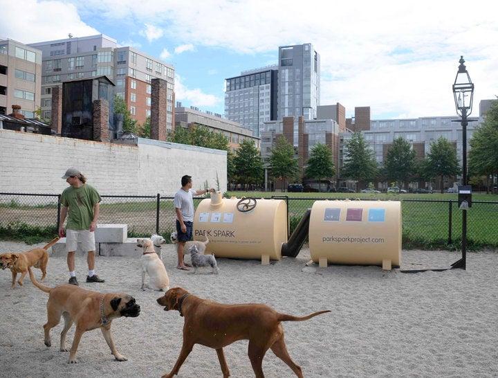 Dog Poo Powers a Streetlight In Massachusetts Park