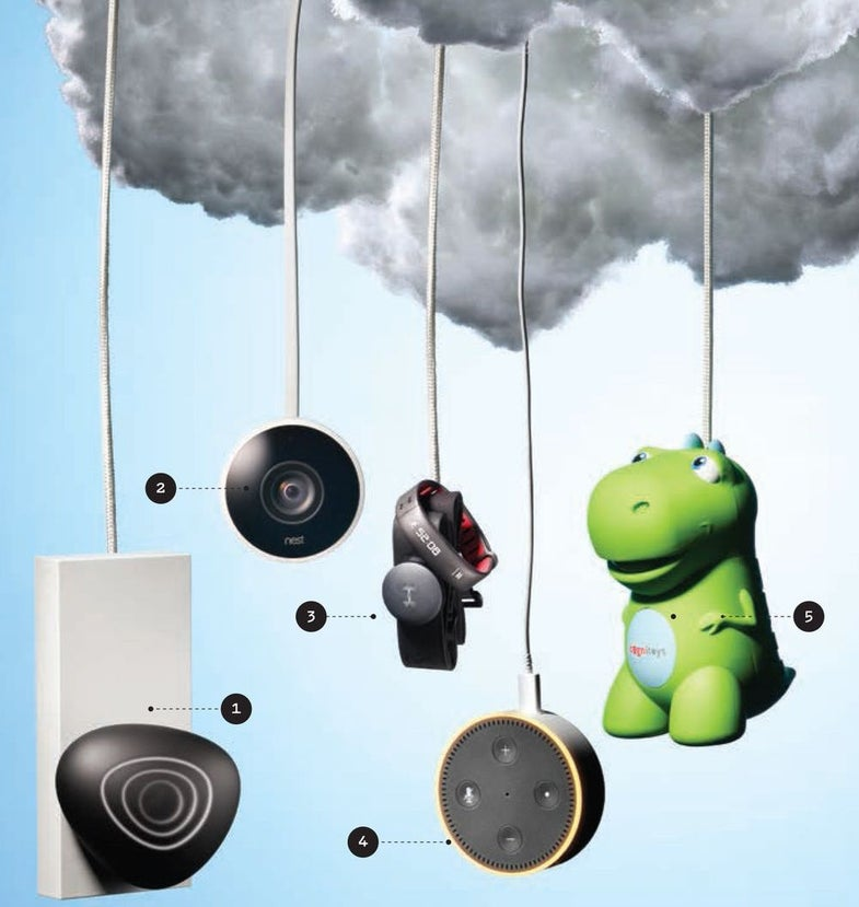Little devices that use huge cloud servers to do your bidding