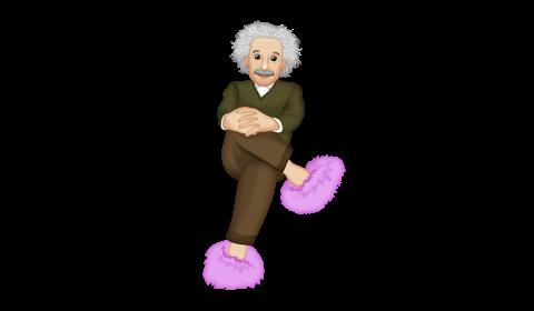 Einstein in pink fuzzy slippers