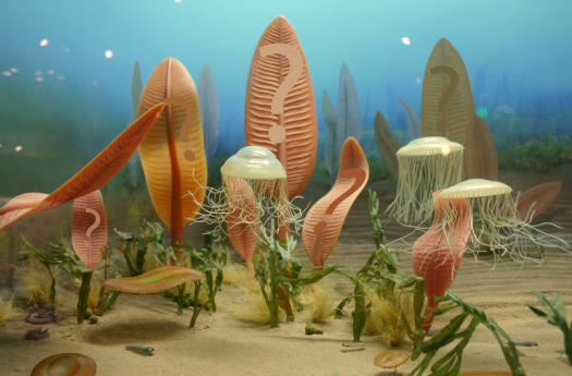 Who Were The First Organisms To Live On Land?