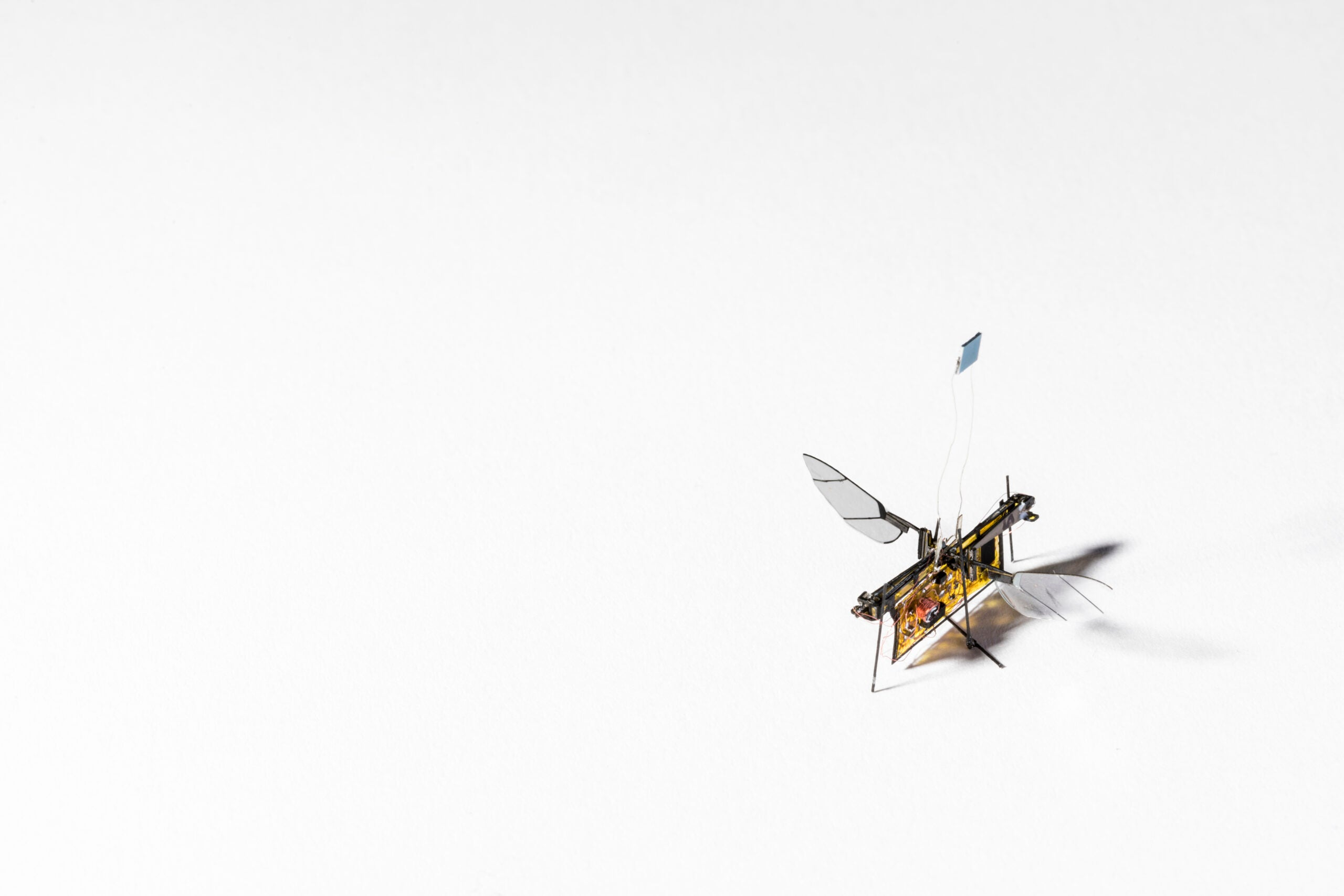 This tiny, laser-powered RoboFly could sniff out forest fires and gas leaks