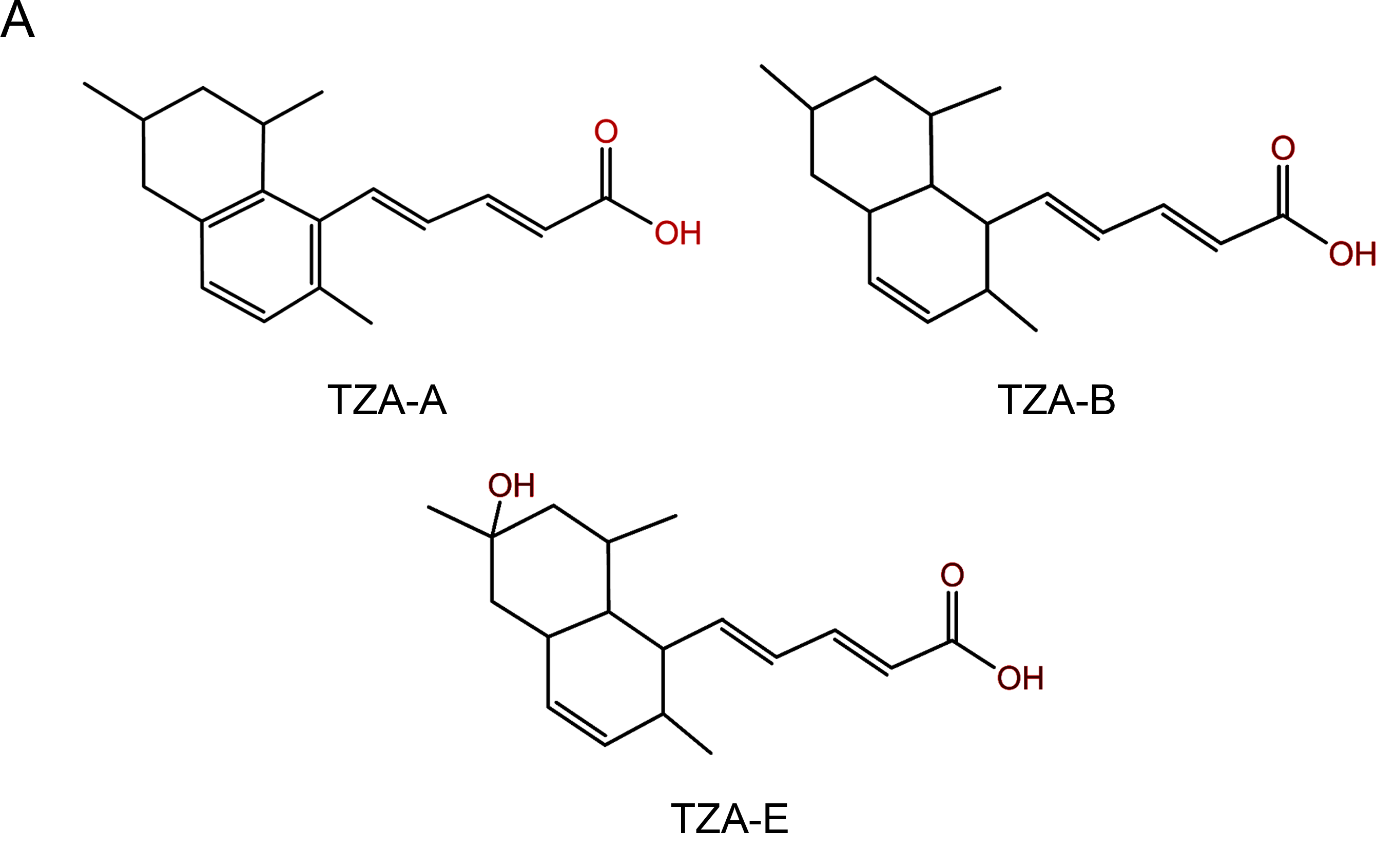 Tanzawaic Acid: A New Weapon In The Fight Against Antibiotic Resistance