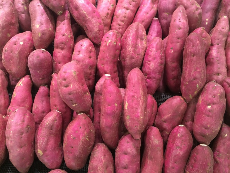 Why archaeologists are arguing about sweet potatoes