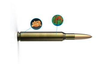 Bullet Solves Crime By Tagging Shooters And Snagging Their DNA