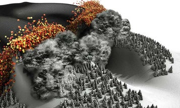Anatomy of a wildfire