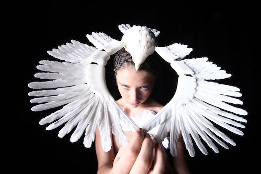 A 3-D Printed Fashion Show Inspired By Birds