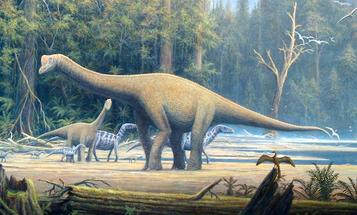 FYI: What Kind Of Dinosaur Meat Would Taste Best?