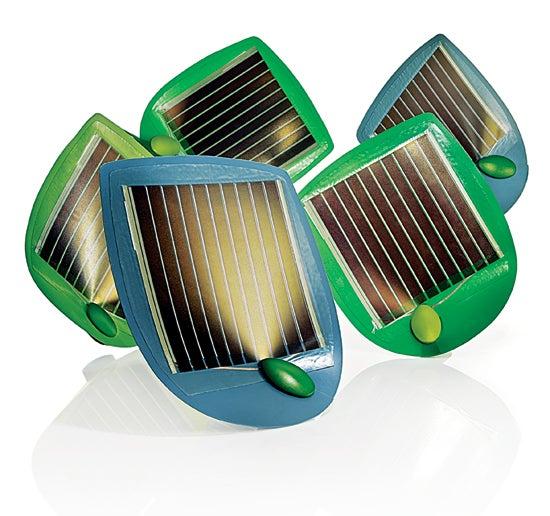 Lightweight Solar Panels That Mimic Wall-Crawling Ivy