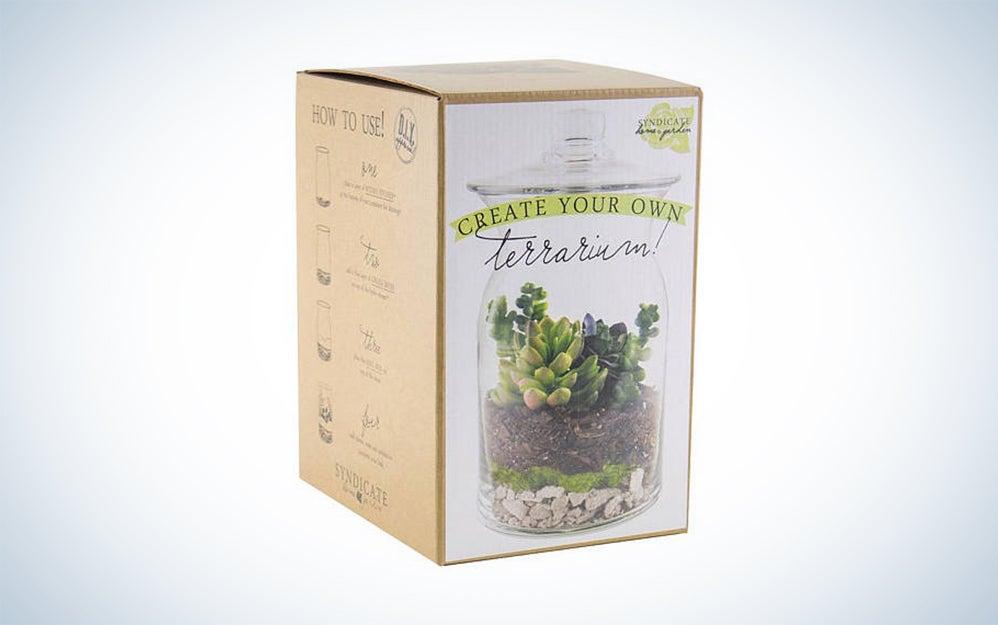 GardenGoodsDirect build your own terrarium