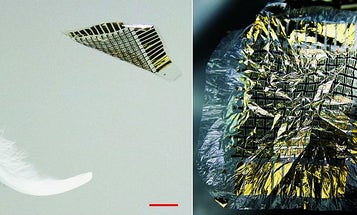 New Tactile Sensor Is Lighter Than A Feather
