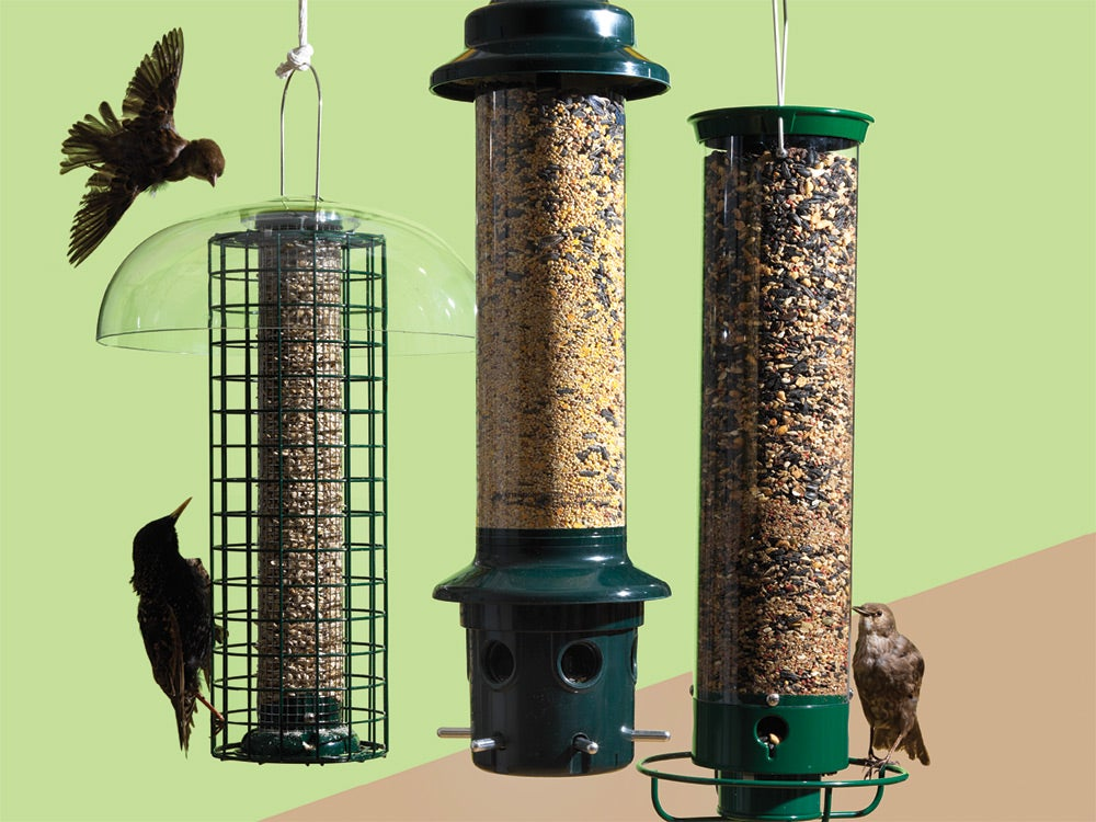 These bird feeders won't get raided by squirrels