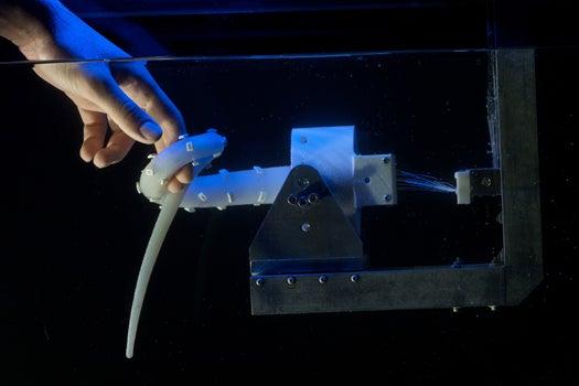 Robotic Octopus Tentacle Wants to Become Robotic Octopus, Seeks Seven More Tentacles