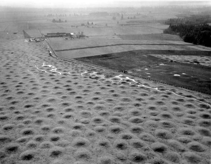 Simulated Gophers Explain Mysterious Mima Mounds