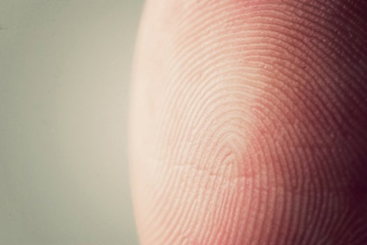 A Florida School District is Taking Attendance by Scanning Students' Fingers