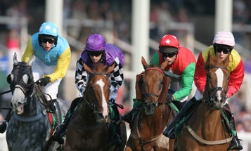 Racehorses Are Getting Faster Over Time, Study Says