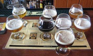 How Flies Are Responsible For Beer's Tasty, Fruity Smells