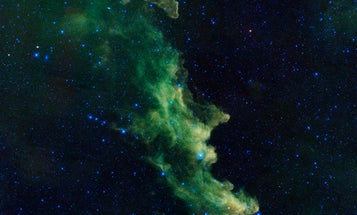Big Pic: Young Stars Brew In The Witch Head Nebula