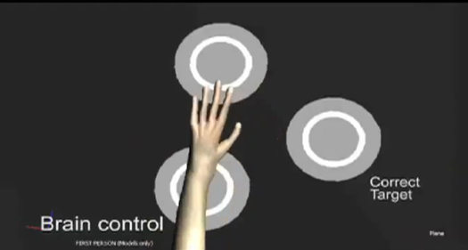 Video: Monkeys Demonstrate Brain-Controlled Arm With a Sense of Touch