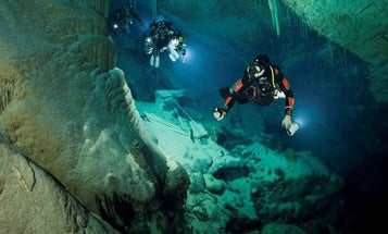 I've dived in hundreds of underwater caves hunting for new forms of life