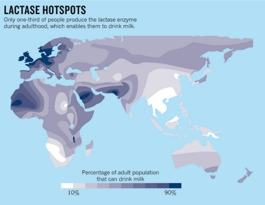 What Are The Most Lactose Intolerant Places In The World? [Infographic]