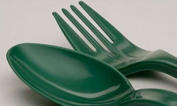 Algae Used To Produce Green Plastics, Sans Petroleum