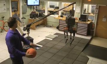 Video: Robot Gets Pelted By Dodgeballs