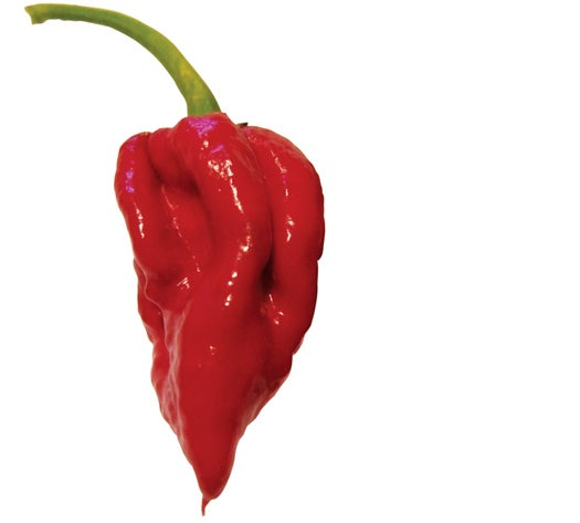 FYI: What is the Hottest Pepper in the World?