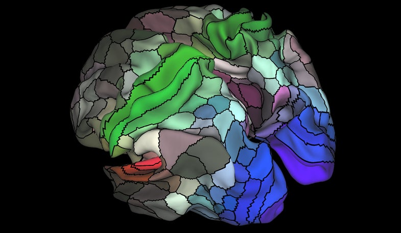 This New, Ultra-Detailed Map Of The Brain Could Change Medicine