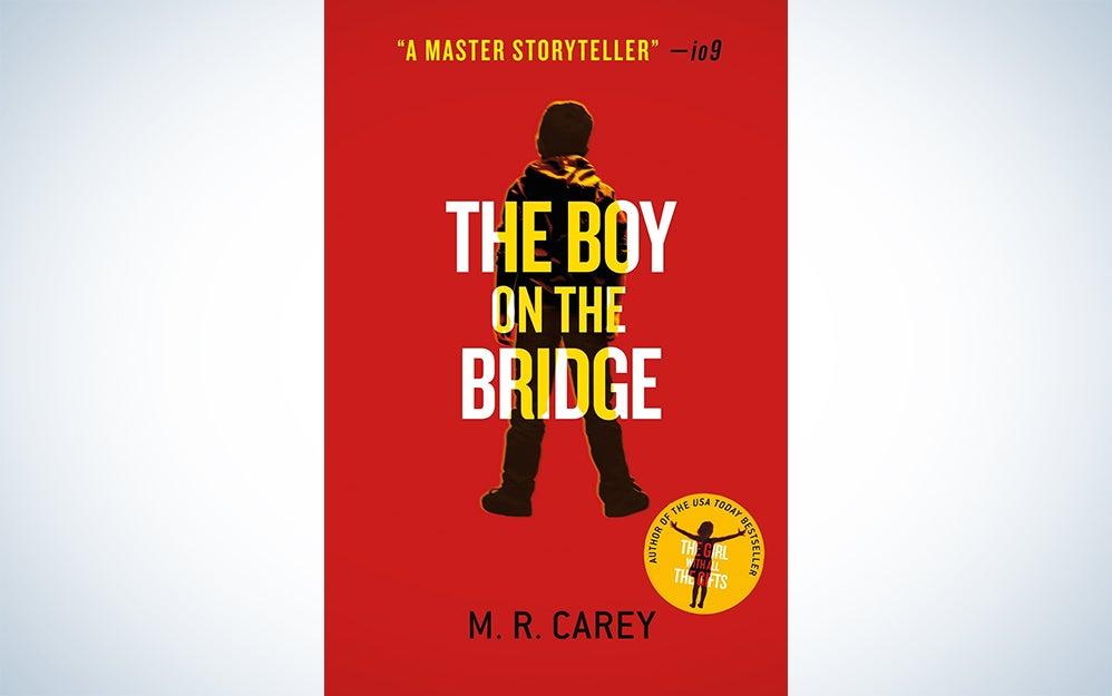 boy bridge
