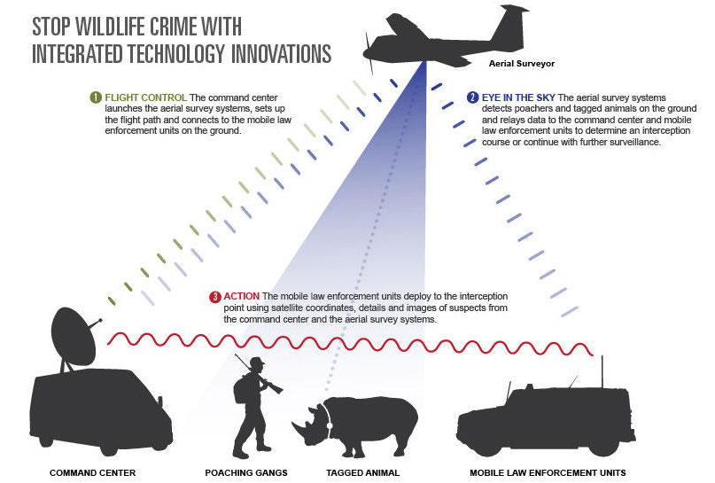 How the WWF Is Hunting Poachers