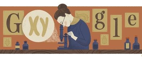 Nettie Stevens, Discoverer Of Sex Chromosomes, Honored By Google