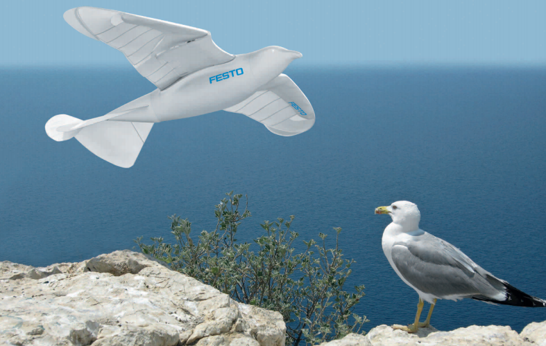 Video: Seagull Robot Takes Off And Flies On Its Own, Just Like the Real Thing