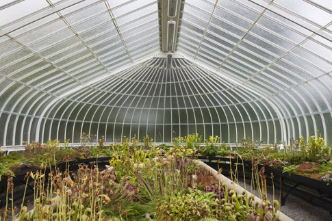 Ole! Spanish Greenhouses Make Climate Less Caliente