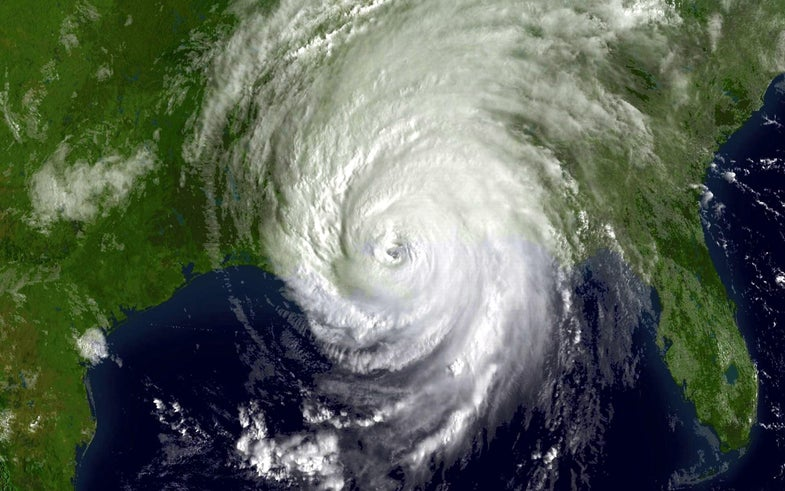 Shipwrecks And Tree Rings Extend The Hurricane Record By 350 Years