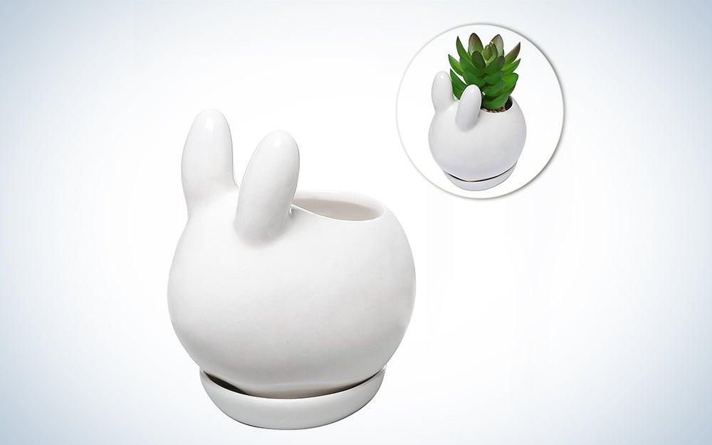 """""""Bunny"""