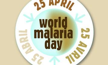 Malaria, Mosquitoes, and Microbiota Control
