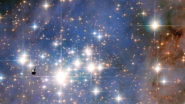 star cluster of the most luminous stars