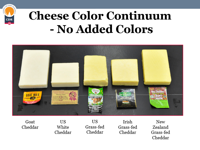 cheddar cheese colors