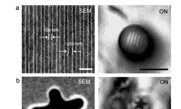 World's Most Powerful Optical Microscope Lets Researchers See Inside Viruses