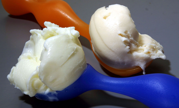 Fraunhofer Lab Debuts Healthful Ice Cream Made from Flowers Instead of Milk