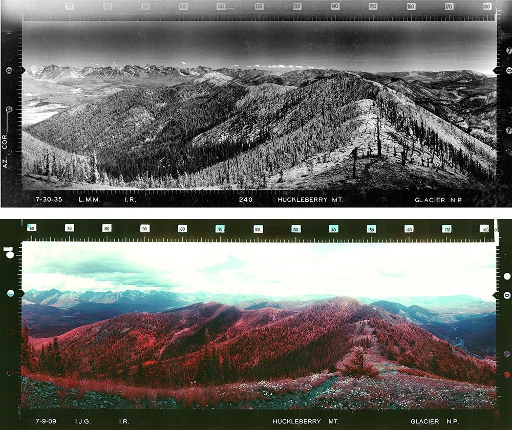 Huckleberry Mountain in Glacier National Park