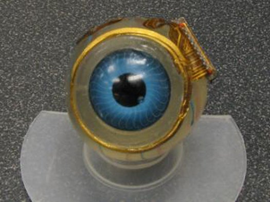 Retinal Microchip Puts Images Directly Into Brain