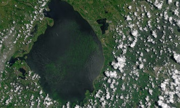 New Satellite Images Show Extent Of Florida Algal Bloom