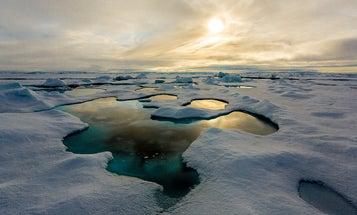 Good job: Arctic sea ice is full of our junk plastic