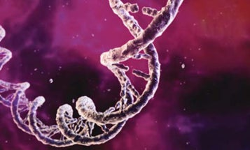 DNA from Scratch